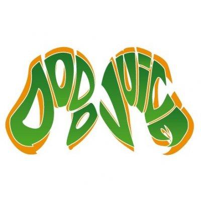 Dodo Juice Logo sticker - Small - 6,8x12,5cm